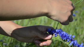 Hands make flower wreath stock video footage