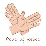 Hands making fly of bird. Dove of peace sign creative idea. Vector illustration Royalty Free Stock Photos