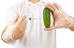 Hands making injection to cucumber Stock Image