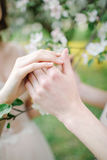 Hands of male and female over blossom tree. In love Stock Images