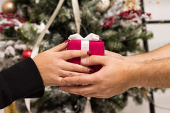 Hands of man giving red Christmas gift Royalty Free Stock Image
