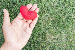 Hands of a man holding a red hart as symbol of love. valentine d Royalty Free Stock Photo