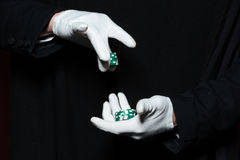 Hands of man magician in white gloves holding casino chips Royalty Free Stock Photo