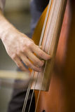 Hands of man playing the bass Royalty Free Stock Photography