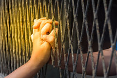 Hands of the man and woman on a steel lattice close up Stock Image