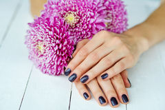 Hands with manicure and pink flower Stock Images