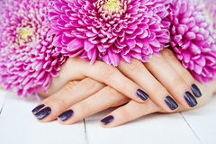 Hands with manicure and pink flower Royalty Free Stock Images