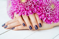 Hands with manicure and pink flower Stock Photo