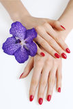 Hands with manicure and purple orchid Royalty Free Stock Photos
