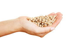 Hands with many wood pellets Stock Images