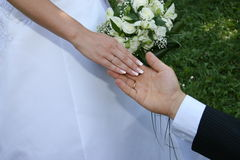 Hands married. Hands newlyweds on background of the bouquet. This photo is not correction Royalty Free Stock Photography