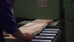 Hands of the master cut tree, woodworking. stock video footage