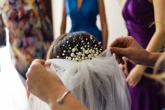 The hand of the master on hairstyles which corrects a veil at the bride nagolove stock photography