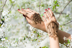 Hands with Mehndi Royalty Free Stock Image
