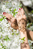 Hands with Mehndi Stock Image