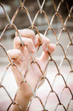 Hands with Mesh cage, Hands with steel mesh fence Royalty Free Stock Images