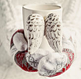 Hands in mittens holding a cup of vintage wings close-up.  royalty free stock photography