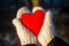 mittens holding red heart Royalty Free Stock Images