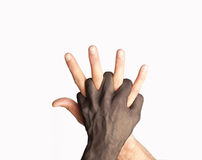 Hands Mix. Two hands mixed over white background Royalty Free Stock Photo