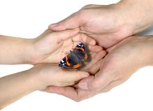 Hands of mother and child and bright beautiful butterfly. mother`s day card