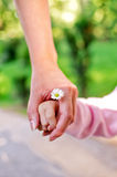 Hands of mother and daughter Stock Photography