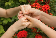 Hands of mother and daughter holding  together Royalty Free Stock Photo
