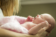 Hands of Mother Holding Her Newborn Baby Girl Royalty Free Stock Photo
