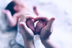 Hands of mother keep little feet baby. Friendly happy family royalty free stock photography