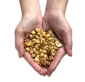 Hands with muesli. Woman hands filled with muesli stock photo