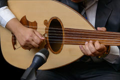Hands of Musician Playing Note on Lute. Hands of A Musician Playing Note on Lute royalty free stock photo