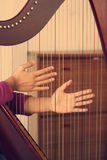 Hands muting with harp instrument. Non-Pedal Harp in abstract nature  background,retro filter effect Royalty Free Stock Photography