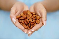 hands muttrar Kvinnan räcker hållande sund mat royaltyfria bilder