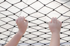 Hands with net, Hands with rope mesh fence Stock Image