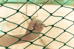 Hands with net, Hands with rope mesh fence Stock Photo