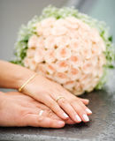 Hands of new married Royalty Free Stock Images
