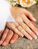 Hands of new married Stock Photography