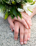 Hands of new married Stock Photos