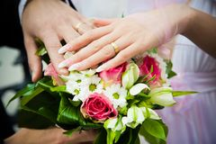Hands of newly married Royalty Free Stock Photography