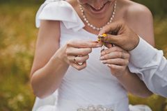 Hands of the newly-married couple 1418. Stock Photos