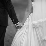 Hands of a newly wed couple Royalty Free Stock Image