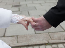 Hands of newly wedded with wedding rings Royalty Free Stock Photo