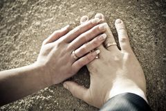 Hands of the newly-weds Stock Photography