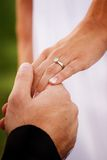 Hands of newlywed couple. Groom holding hand of newlywed bride with wedding ring Stock Photo