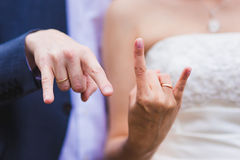 Hands newlywed royalty free stock photos