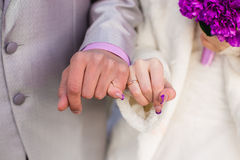 Hands newlywed royalty free stock image
