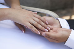 Hands newlyweds couple Stock Image
