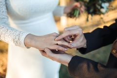 The hands of the newlyweds. A man`s hand puts on a ring. wedding ceremony. Bride hands. The hands of the newlyweds. A man`s hand puts on a ring. wedding ceremony Stock Photos