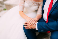 The hands of the newlyweds with rings Stock Image