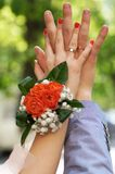 Hands newlyweds. Wedding rings on the fingers of the newlyweds Royalty Free Stock Photos