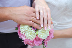 Hands of newlywedses Stock Image